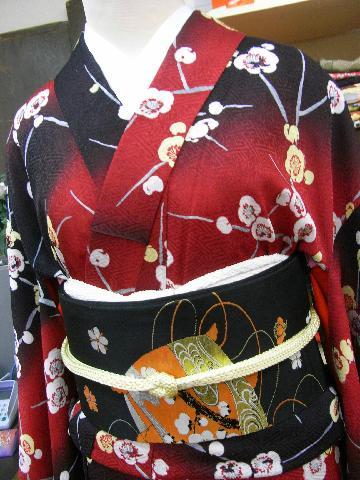 japan flower february